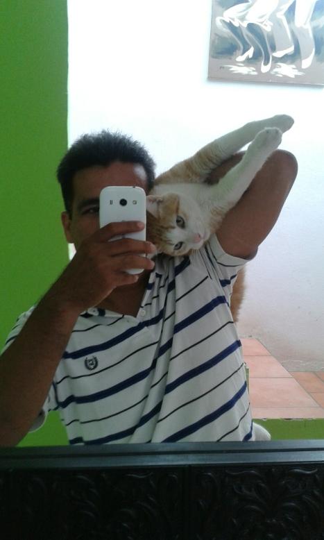 Tango Gato