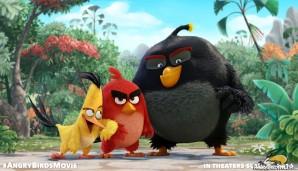 angrybirds2016