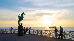 puertovallarta_seahorse